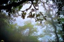 kpvn-khu-rung-thoi-gian-hoang-lien-son