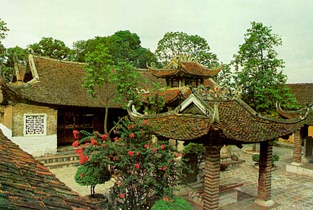 dinh-chem-caycanhthanglong-1