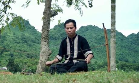 Trong dat Phu Tho