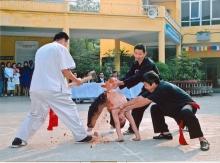 kham-pha-viet-nam-Congphu_TrungChi